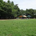 若葉台公園 バーベキュー可能な芝生広場②