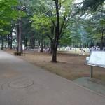 野川公園 バーベキュー場沿い歩道