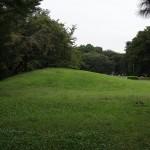 野川公園 大芝生の丘