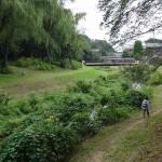 野川公園 野川沿いの歩道