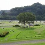 高田橋河川敷 芝生の公園