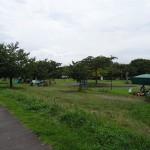 稲城北緑地公園 ピクニック広場10