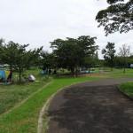 稲城北緑地公園 ピクニック広場6