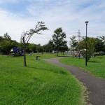 稲城北緑地公園 ピクニック広場5