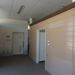 さくら運動公園 (64)