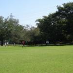 さくら運動公園 (9)