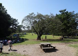 光が丘公園 芝生広場