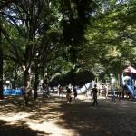 光が丘公園 子供用遊具