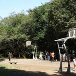 光が丘公園 バスケットコート