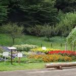 小山内裏公園(東京都 町田市 八王子市)をおすすめスポットに追加しました。