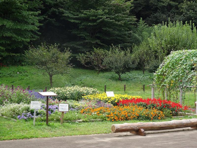 小山内裏公園 よく手入れされた花壇
