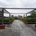 松木公園 連絡通路から長池公園へ
