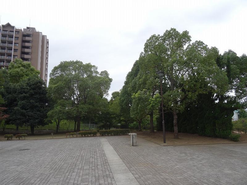 松木公園 (4)