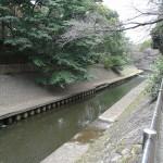 和田堀公園 善福治川