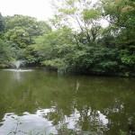 和田堀公園 噴水