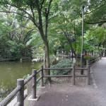 和田堀公園  散策路