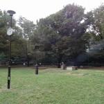 和田堀公園 広場