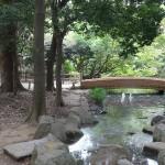和田堀公園(東京都 杉並区)をおすすめスポットに追加しました。