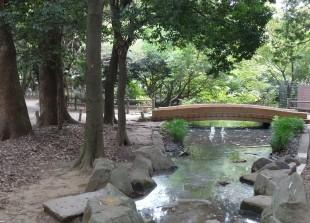 和田堀公園 和田堀池