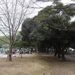 和田堀公園 BBQ広場