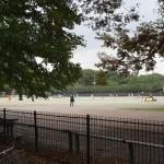 和田堀公園 競技場