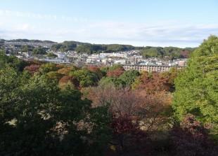 富士見台公園 展望台からの眺め
