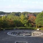 富士見台公園 中央広場