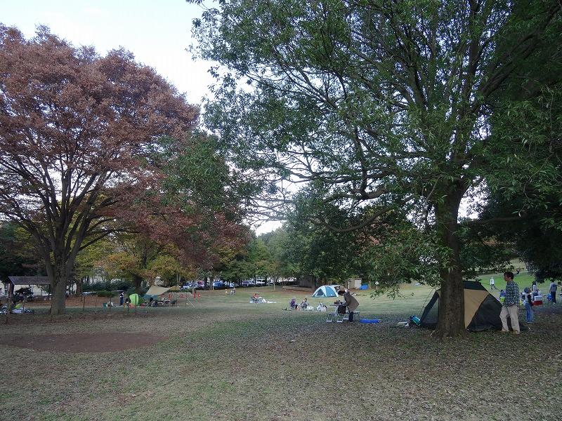 富士見台公園 ピクニック広場