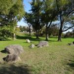 拝島自然公園