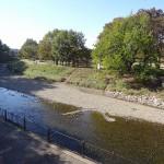 金山公園 河川敷