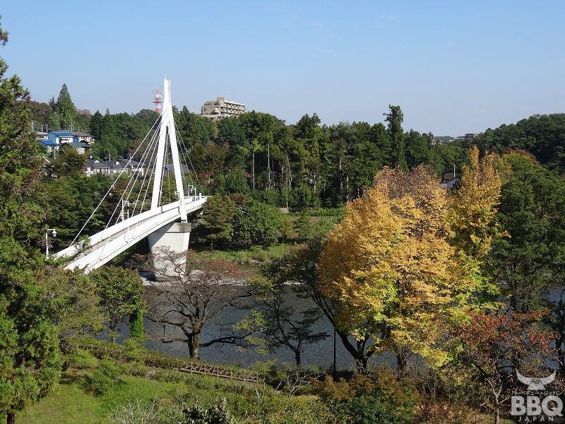 釜の淵公園 鮎美橋