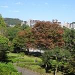釜の淵公園 芝生広場