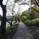 釜の淵公園 散策路