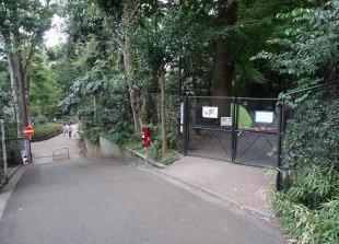 鎌田公園 (17)