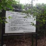 鎌田公園 利用案内