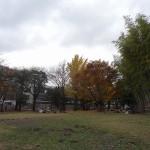 たけのこ公園(東京都 小平市)をおすすめスポットに追加しました。