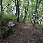 つどいの森公園 散策路
