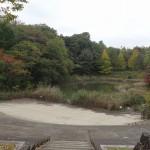つどいの森公園 つどいの池