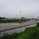 浅川河川敷 ふれあい橋