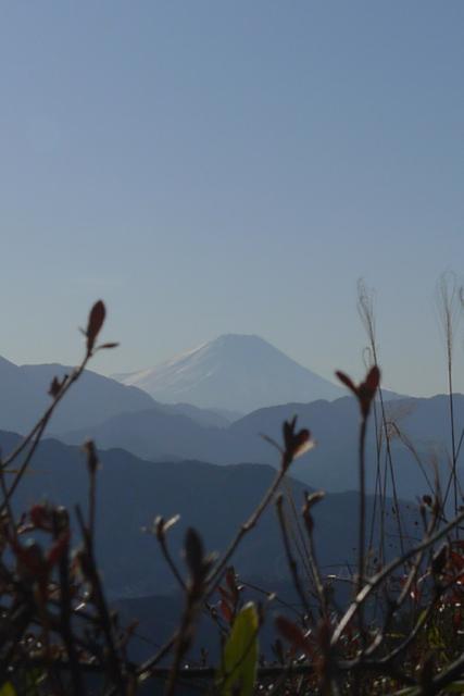 高尾山もみじ台からみた富士山
