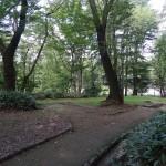 富士森公園 散策路