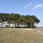 京浜島つばさ公園(東京都大田区)をおすすめスポットに追加しました