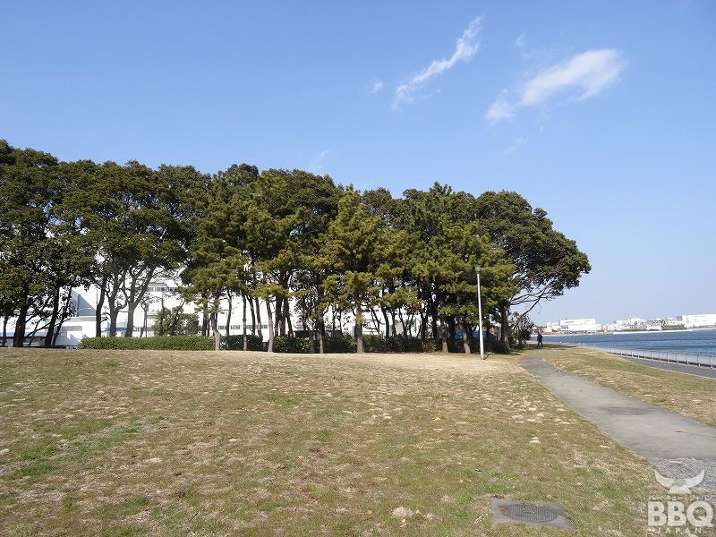 京浜島つばさ公園 (20)
