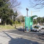 大井ふ頭中央海浜公園 駐車場
