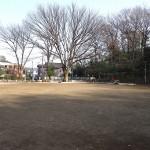 本門寺公園 グランド