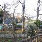 本門寺公園 弁天池