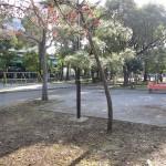 平和島公園 遊具広場
