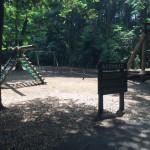 泉の森 遊具
