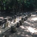 泉の森 野外卓