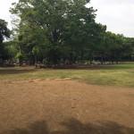 引地台公園 自然
